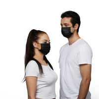High Quality Best Selling Non Woven Protective Disposable Face Mask