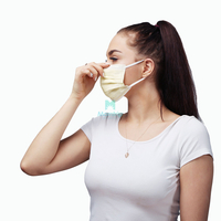 3 Ply Sanitary Breathable Non Woven Pleated Air Pollution Protective Disposable Face Mask