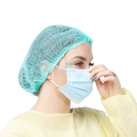 Anti Hay Fever Daily Use 3 Ply Pleated Non Woven Disposable Earloop Face Mask